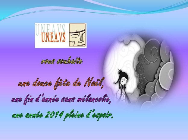 VoeuxUNEAVS2014